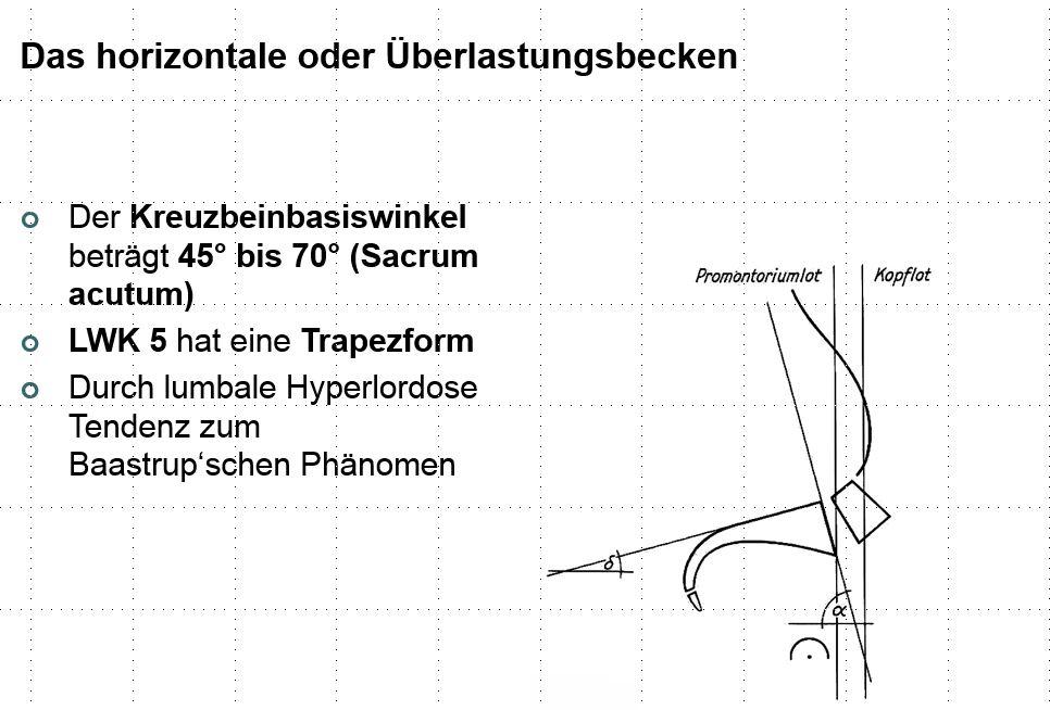 Ausgezeichnet Normale Fußanatomie Galerie - Anatomie Ideen - finotti ...